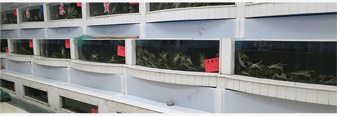 蟹净化过滤池